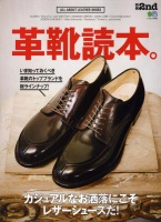 Leather shoes book